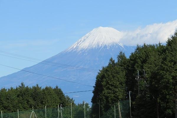 IMG_1374 hamaishi06.jpg