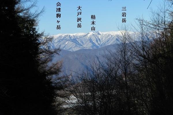 IMG_1427 keityo 04.jpg
