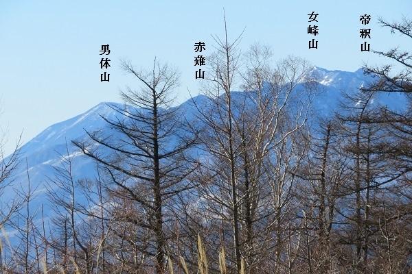 IMG_1443 keityo 11.jpg