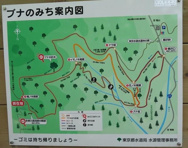 IMG_2349 kurokawa 17.jpg