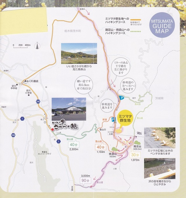 route map toriasi 24.jpg